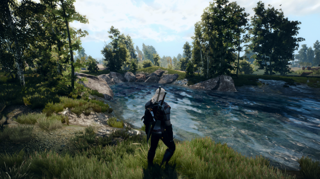 Best Witcher 3